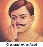 Bhagat singh freedom fighter essay help